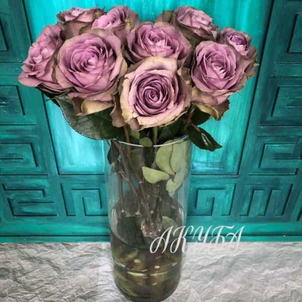 """Розы """"Тиара"""" фото 2"""