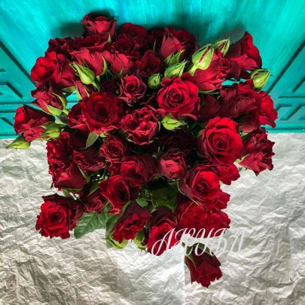 Красные розы «Руби»