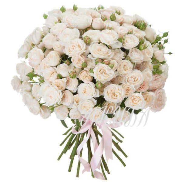 Роза кустовая LADY BOMBASTIK 3