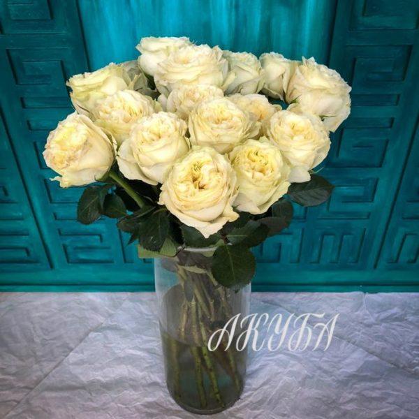 Розы белые большие Майрэс Роус 50-60 см