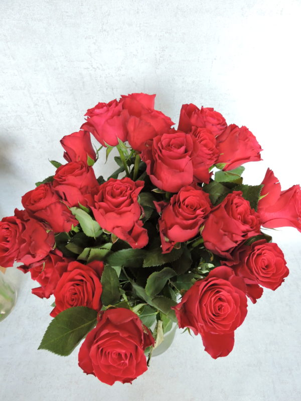 Роза красная Кения 2