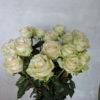 Роза белая Кения 1