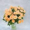 Роза кутовая нежно-персиковая Кения 4