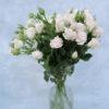 Роза кустовая бело-кремовая Кения 3