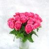 Роза фиолетовая Кения
