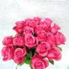 Роза фиолетовая Кения 4