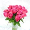 Роза фиолетовая Кения 3