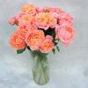 Роза кустовая нежно-розовая Кения 6