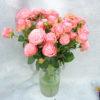 Роза кустовая нежно-розовая Кения 2