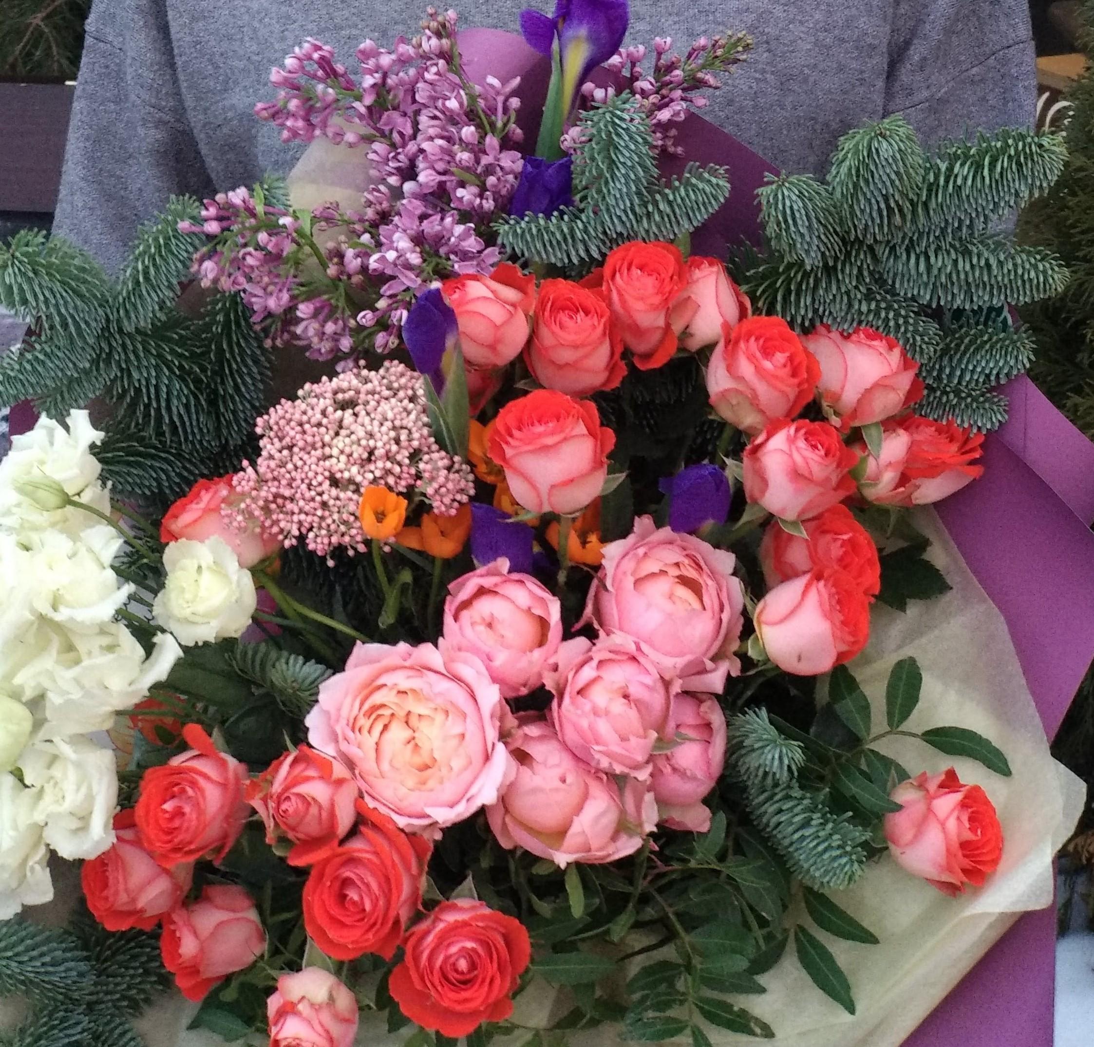 170 ирисы, роза куст, роза джульетта