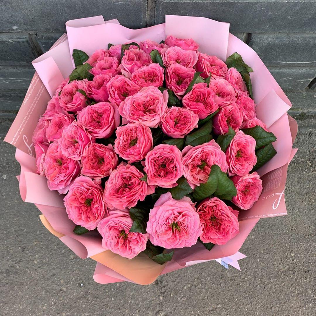 35 роз Regents Park