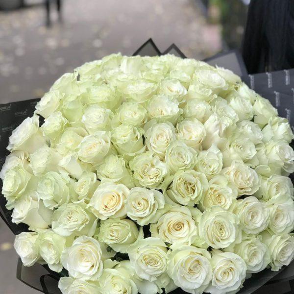 75 штук розы Mondiale