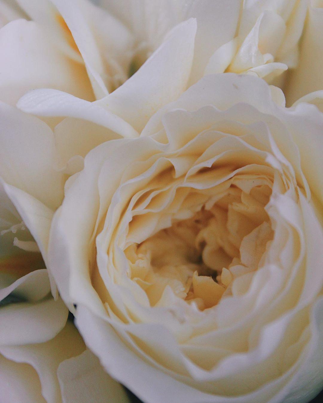 Букет невесты №27 фото 3