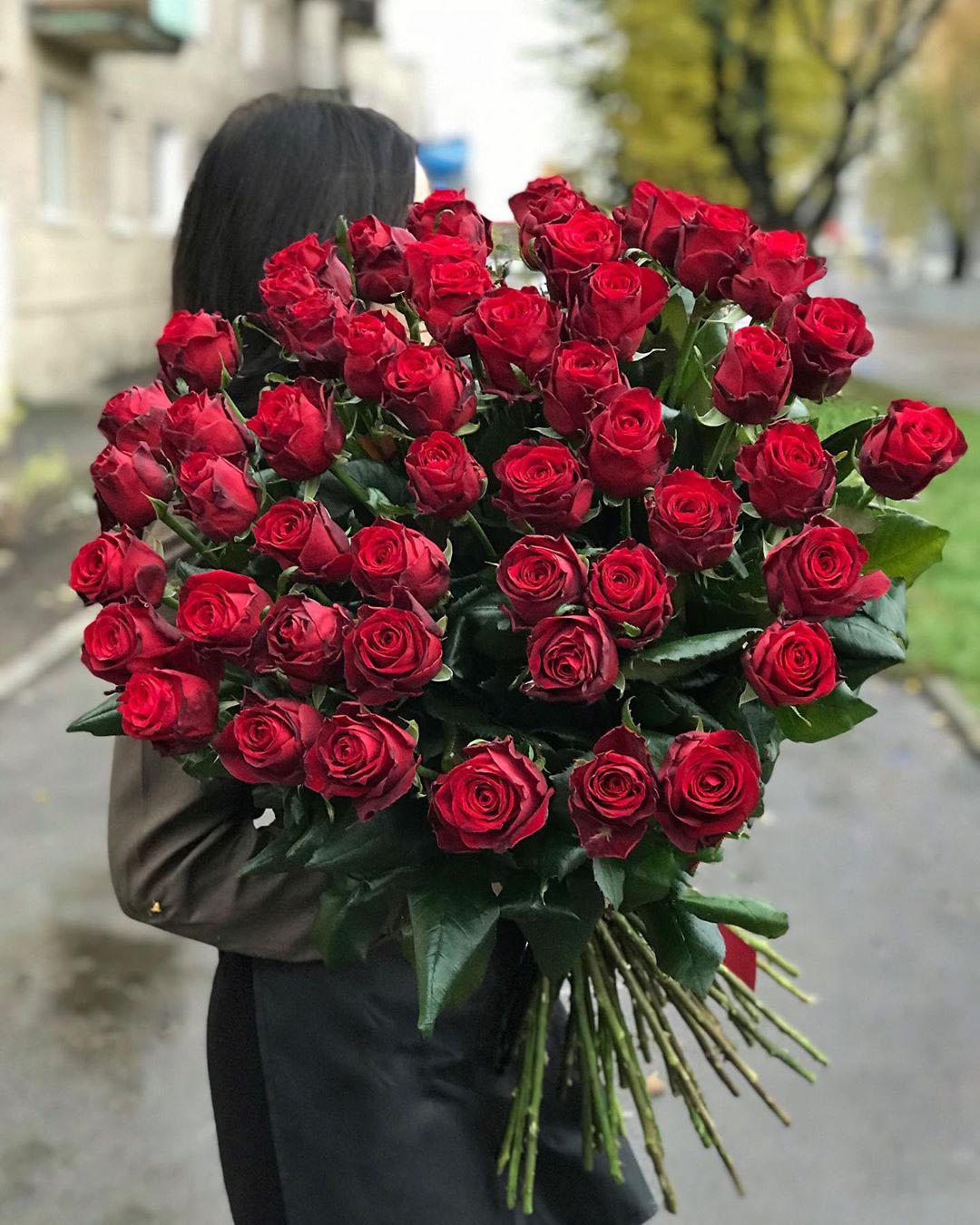 Ред Дизаер 51 шт